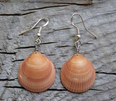 Earring Clam Shell Santo Domiingo