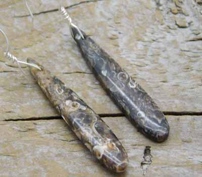 Turitella Fossil Earrings 1