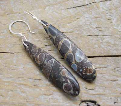 Turitella Fossil Earrings 2