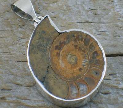 Shell Pendant encased in Sterling Silver